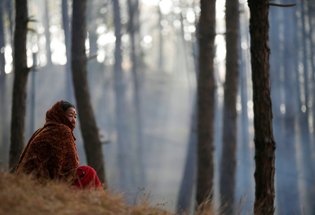 A devotee sits along the woods of Changu Narayan during the Swasthani Bratakatha festival in Bhaktapur, Nepal February 8, 2017. (Photo by Navesh Chitrakar/Reuters)