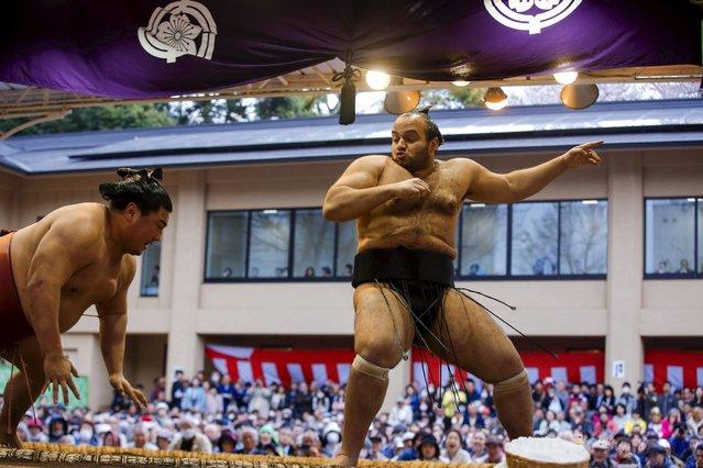 "Egyptian-born sumo wrestler Osunaarashi Kintaro (R) competes with Yoshikaze Masatsugu during the ""Honozumo"" ceremonial sumo tournament at the Yasukuni Shrine in Tokyo April 3, 2015. (Photo by Thomas Peter/Reuters)"