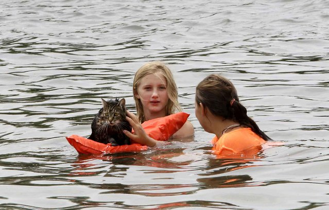 Princes the cat spent time on the American river with owner, Ashley Toccati, right, and her friend Kasandra Mullen, at Discovery Park, Wednesday, July 1, 2015, in Sacramento, Calif. (Photo by Rich Pedroncelli/AP Photo)