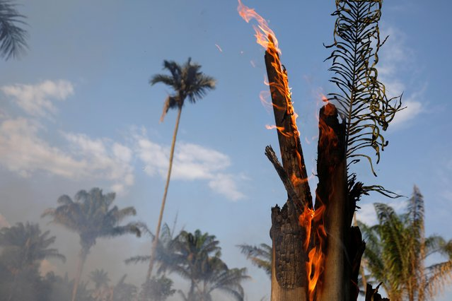 An tract of Amazon jungle burning as it is being cleared by loggers and farmers in Iranduba, Amazonas state, Brazil on August 20, 2019. Wildfires raging in the Amazon rainforest have hit a record number this year, with 72,843 fires detected so far by Brazil's space research center INPE, as concerns grow over right-wing President Jair Bolsonaro's environmental policy. (Photo by Bruno Kelly/Reuters)