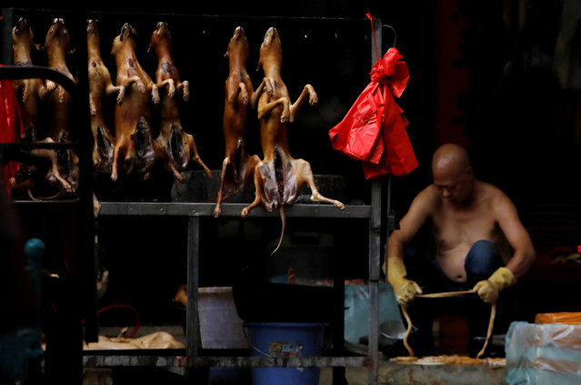Butchered dogs displayed for sale at a stall inside a meat market during the local dog meat festival, in Yulin, Guangxi Zhuang Autonomous Region, China on June 21, 2018. (Photo by Tyrone Siu/Reuters)