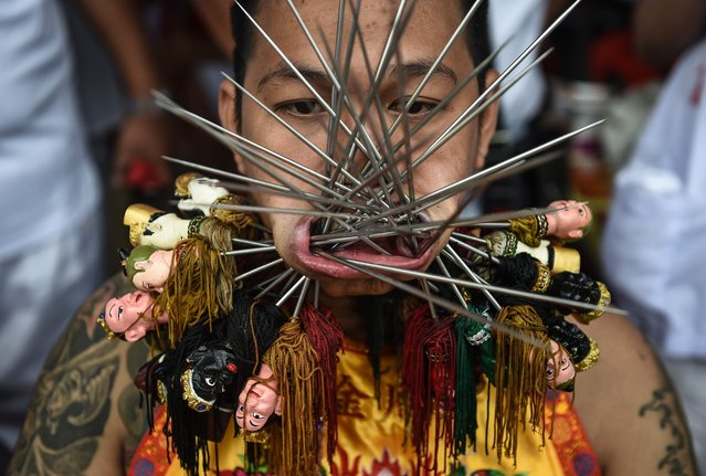 A devotee of the Nine Emperor Gods is seen with multiple skewers pierced through his mouth during the annual Phuket Vegetarian Festival in the southern province of Phuket on October 3, 2016. (Photo by Lillian Suwanrumpha/AFP Photo)