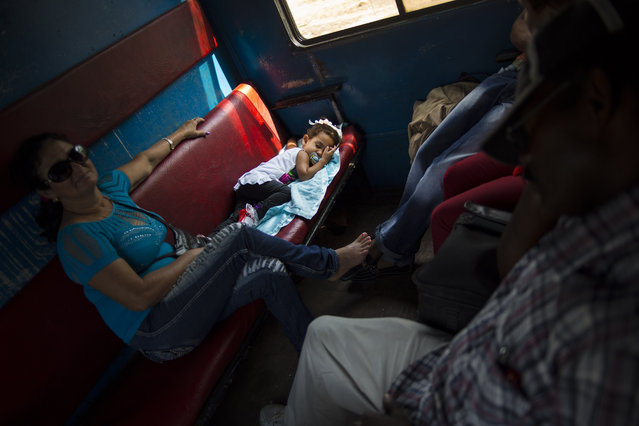 In this March 23, 2015 photo, a girl sleeps on a moving train with her family as they travel from Santiago de Cuba, to Santa Clara, in the Holguin province of Cuba. While the island is slowly modernizing its rail system, it remains the slowest way to get around already slow-moving Cuba. (Photo by Ramon Espinosa/AP Photo)