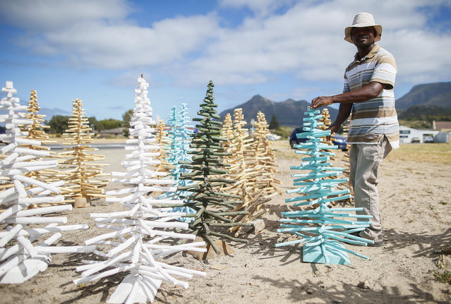 A South African man sells a version of the Christmas Tree on a roadside in Cape Town, South Africa, December 18, 2014. The unusual yet popular Christmas Trees are made from the branches of indigeneous trees and painted in various colours. Large trees sell for 600 South African rand (around 42 euro) and small trees for 300 South African rand (around 21 euro). (Photo by Nic Bothma/EPA)