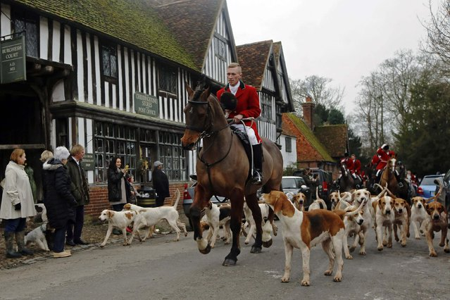 Members of the Old Surrey Burstow and West Kent Hunt ride with hounds during the annual Boxing Day hunt through the village of Chiddingstone, south east England December 26, 2014. (Photo by Luke MacGregor/Reuters)