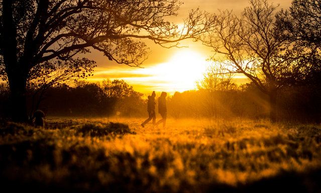 Two people walk through early morning frost during sunrise in Epping Forest, east London on November 23, 2020. (Photo by Victoria Jones/PA Images via Getty Images)