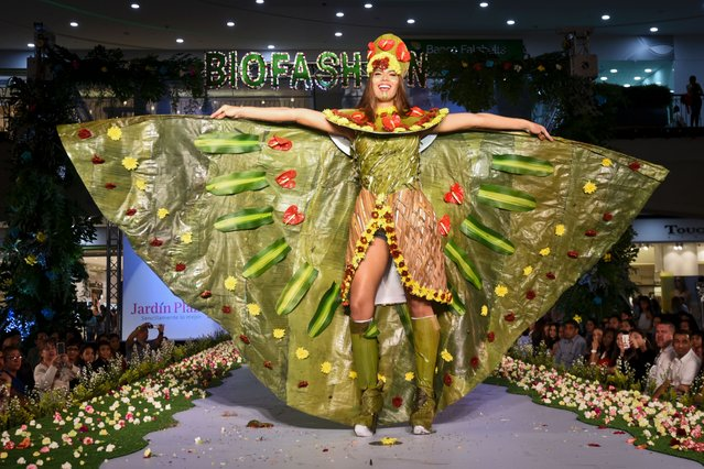 A model presents a creation by Colombian designer Daniela Bedoya made with organic elements during BioFashion Show, on November 19, 2016, in Cali, Valle del Cauca department, Colombia. (Photo by Luis Robayo/AFP Photo)