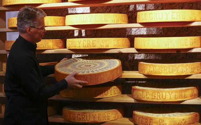 A Swiss exhibitor poses with cheese for media during preparations for the Green Week international food, agriculture and horticulture fair in Berlin, Germany, January 13, 2016. (Photo by Hannibal Hanschke/Reuters)