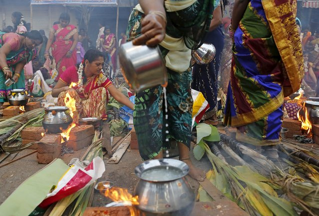 Devotees prepare ritual rice dishes to offer to the Hindu Sun God as they attend Pongal celebrations at a slum in Mumbai, India, January 15, 2016. (Photo by Danish Siddiqui/Reuters)