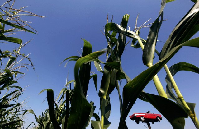 A 1957 Chevy is seen suspended in the air from a pillar near a field in West Branch, Iowa September 1, 2011. (Photo by Jim Young/Reuters)