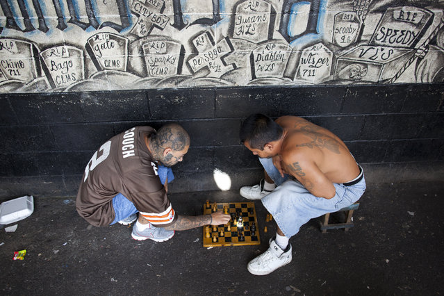 Inmates play chess at the Centro Preventivo y de Cumplimiento de Penas Ciudad Barrios. The prison is reserved for members of the Mara Salvatrucha (MS) gang. The prison has no guards and is run by the members of the gang. Since opening in 1999, the prison has filled up with gang members and now holds twice as many inmates as it was initially intended for. Conditions are extremely overcrowded and unsanitary and violence is common. (Photo by Adam Hinton)