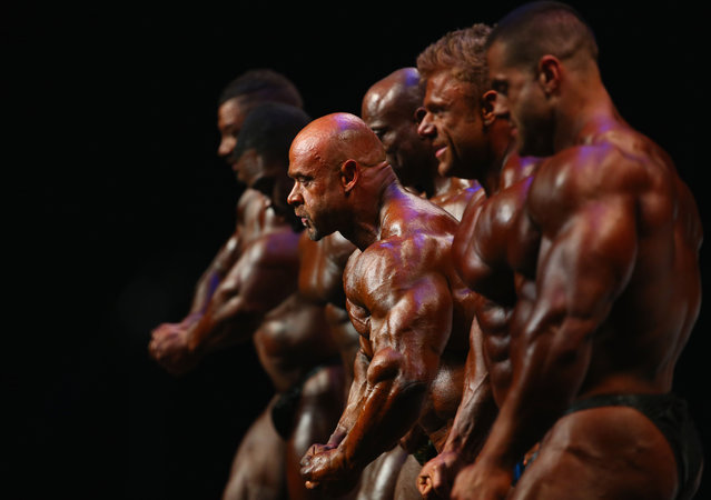 Competitors in the Men's Bodybuilding division are seen on stage during the Arnold Classic Australia at The Melbourne Convention and Exhibition Centre on March 14, 2015 in Melbourne, Australia. (Photo by Robert Cianflone/Getty Images)