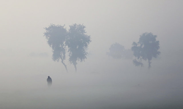 An Indian farmer walks in his field enveloped by thick fog near Hisar, India, Friday, December 23, 2016. In the winter months, northern India experiences fog enveloped mornings that reduce visibility severely, often leading to delays and cancellation of trains and flights. (Photo by Altaf Qadri/AP Photo)