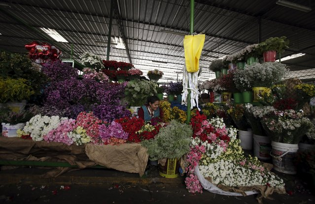 A florist waits for customers at the Piedra Liza flower market in Lima April 29, 2015. The market sells flowers that come from all over Peru. Peru is home to more than 25,000 varieties of flowering plants like geraniums, carnations, roses, hydrangeas and jasmine, according to local media. (Photo by Mariana Bazo/Reuters)