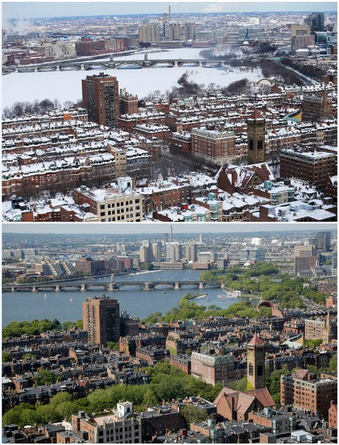 A combination picture shows snow covering roofs, streets and the Charles River following a winter blizzard in Boston, Massachusetts, United States January 28, 2015 (top), and sunlight hitting the same rooftops, June 10, 2015. (Photo by Brian Snyder/Reuters)