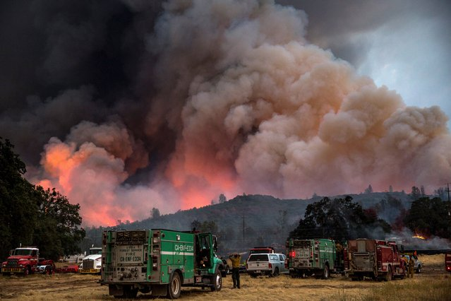 Firefighters watch the Rocky Fire advance in Lake County, California July 30, 2015. (Photo by Max Whittaker/Reuters)