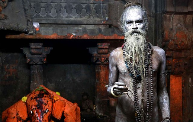 A Naga sadhu, or naked Hindu holy man, poses for a picture after taking a holy dip in the Godavari River during Kumbh Mela, or Pitcher Festival, at Trimbakeshwar in Nasik, India, Sunday, September 13, 2015. Hindus believe taking a dip in the waters of a holy river during the festival, will cleanse them of their sins. (Photo by Rafiq Maqbool/AP Photo)