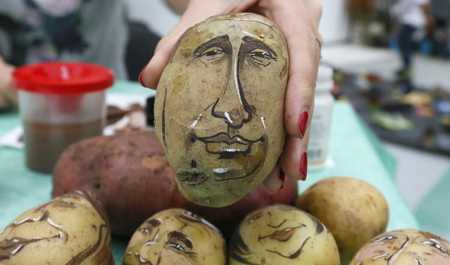 Russian cartoon artist Daria Chebunina shows a potato displaying the image of Russia's President Vladimir Putin during a food fair in Krasnoyarsk, September 20, 2014. (Photo by Ilya Naymushin/Reuters)