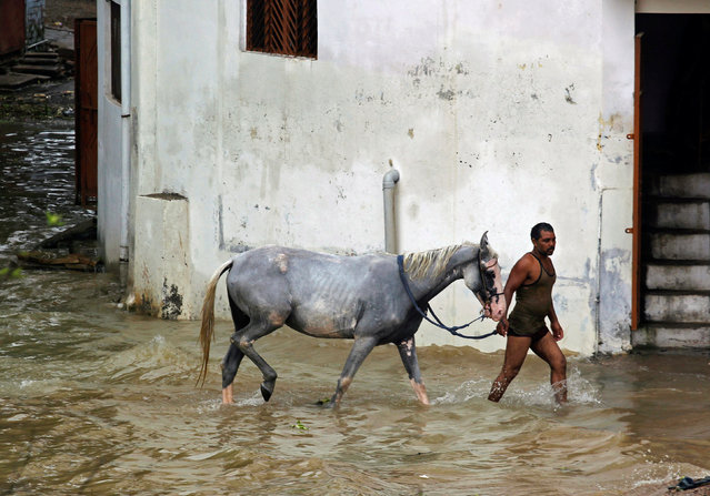 A man wades through water with a horse in a flooded residential colony in Allahabad, India August 23, 2016. (Photo by Jitendra Prakash/Reuters)