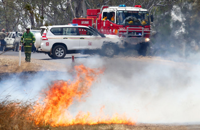 Country Fire Authority (CFA) firefighters work to mop up a fire near Mia Mia in Victoria, Australia, December 18, 2014. Bushfires have been burning in north Eastern Victoria and are believed to have started from lightning strikes. (Photo by David Crosling/EPA)