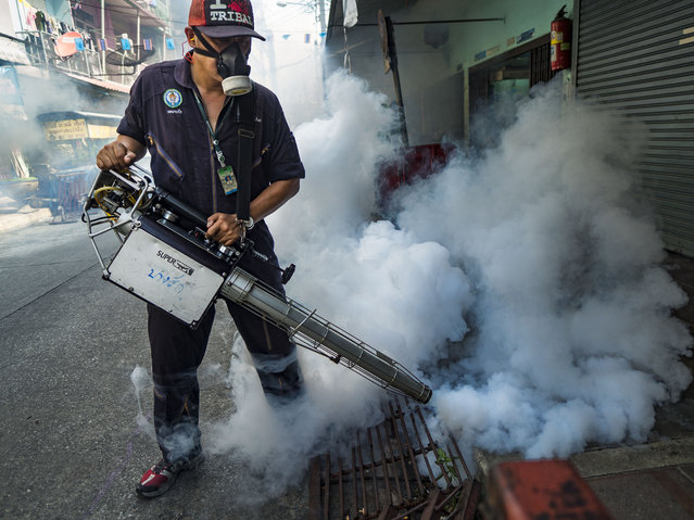 December 2, 2015 - Bangkok, Bangkok, Thailand - A health department mosquito control worker sprays homes and businesses in a neighborhood in Bangkok. The Public Health Ministry in Thailand said that more than 111,000 cases of dengue fever have been reported in 2015, an increase of more than 200% over the number of cases of dengue fever reported 2014. (Photo by Jack Kurtz/ZUMA Wire)