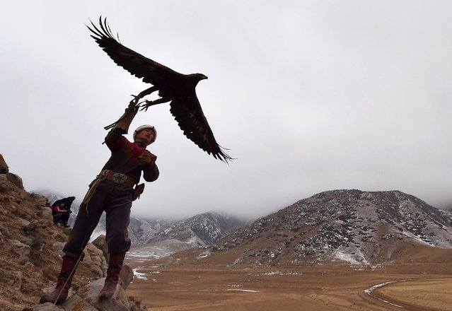 "A Kyrgyz berkutchi (eagle hunter) launches his bird, a golden eagle, during the hunting festival ""Salburun"" in the village of Tuura-Suu, near Issyk-Kule lake, some 280 kilometers from Bishkek, Kyrgyzstan, on February 23, 2021. Salburun is a traditional kind of hunt in Kyrghyzstan and in Central Asia. The festival involves four disciplines including falconry, archery and mounted archery. (Photo by Vyacheslav Oseledko/AFP Photo)"