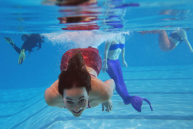 AquaMermaid founder Marielle Chartier Henault swims in a pool in Montreal, February 19, 2015. (Photo by Christinne Muschi/Reuters)