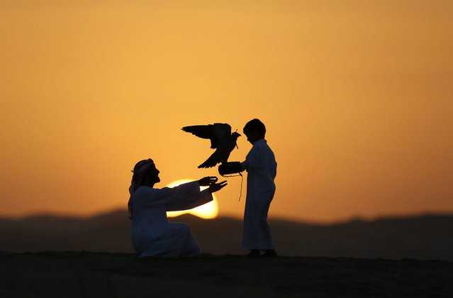 Emirati Mohammed Rakan Bin Harwon Al-Qubassiy (L) hands his falcon to a boy at the Liwa desert, 220 kms west of Abu Dhabi, on the sidelines of the Mazayin Dhafra Camel Festival on December 21, 2013. (Photo by Karim Sahib/AFP Photo)