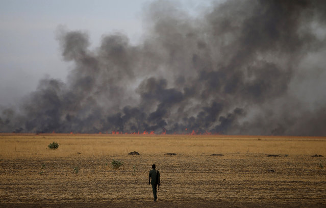 A rebel fighter walks in front of a bushfire in a rebel controlled territory in Upper Nile State February 13, 2014. (Photo by Goran Tomasevic/Reuters)