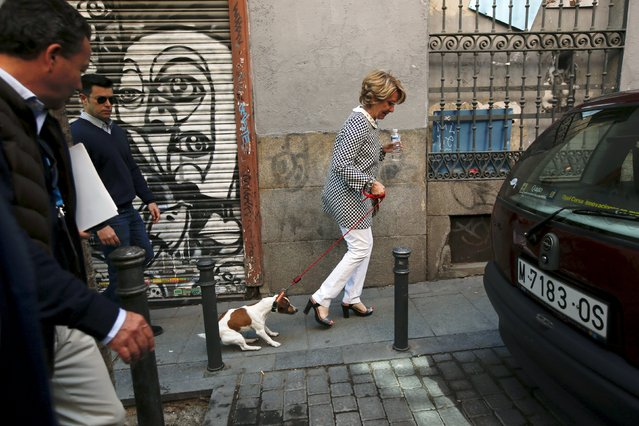 "People's Party Madrid's local candidate Esperanza Aguirre walks with her dog ""Pecas"" after voting at a polling station during regional and municipal elections in Madrid, Spain, May 24, 2015. Spaniards are expected to sweep aside 40 years of predictable politics when they vote in regional elections on Sunday and usher in an unstable era of coalition and compromise, likely to curtail the authority of Spain's Prime Minister Mariano Rajoy. (Photo by Susana Vera/Reuters)"