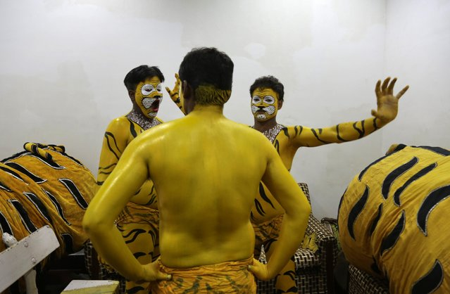 Traditional tiger dancers from India's Orissa state wait for the paint on their bodies to dry before a performance to mark Global Tiger Day in Kolkata, India, Wednesday, July 29, 2015. India's latest tiger census conducted in 2014 showed a sharp increase in the number of the endangered cats in the wild. The country has nearly three-fourths of the world's estimated 3,200 tigers. (Photo by Bikas Das/AP Photo)