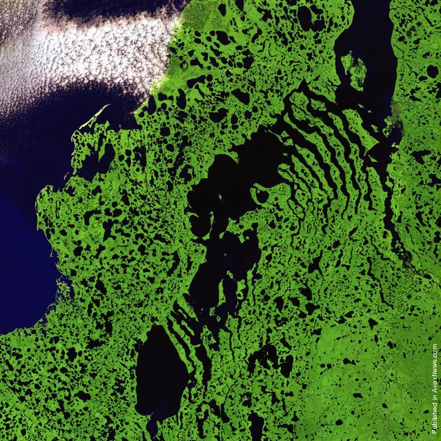 Skeletal extensions of land reach like bony fingers across a section of Liverpool Bay along the northern edge of Canada's Northwest Territories