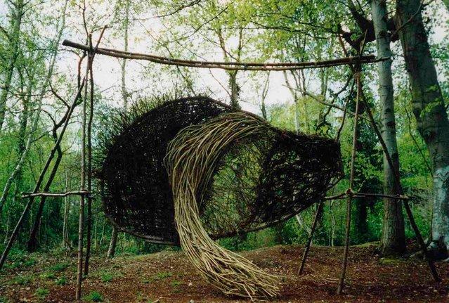 Forest Sculptor Spencer Byles