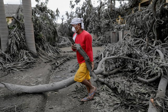 A worker carries a fallen branch in a resort blanketed with volcanic ash in Talisay, Batangas, Philippines, January 14, 2020. (Photo by Eloisa Lopez/Reuters)