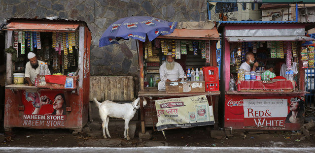 A goat is tied to one of the roadside tobacco shops, as owners wait for customers, in New Delhi, India ,Wednesday, September 3, 2014. (Photo by Manish Swarup/AP Photo)
