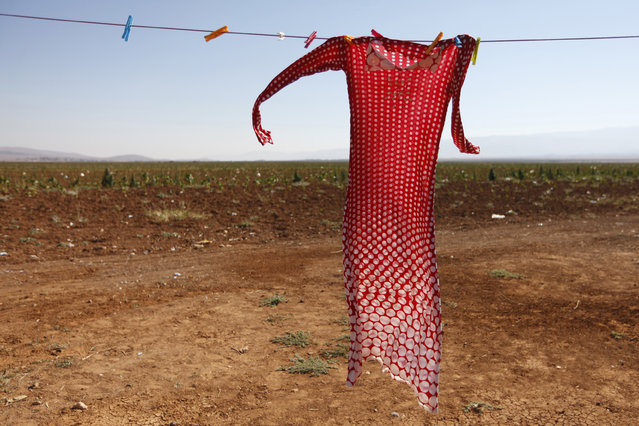 A dress belonging to a Syrian refugee hangs inside an informal settlement in Deir al-Ahmar, Bekaa valley September 16, 2014. Senior UN officials visited Syrian refugees, who now make up one-fourth of Lebanon's entire population, in the Bekaa region on Tuesday and called for the international community to assist the Lebanese government in dealing with the refugee crisis. (Photo by Alia Haju/Reuters)