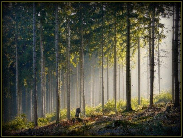 Ründeroth – A winter morning