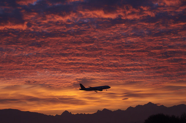 A Brussels Airlines aircraft prepares for landing in Cointrin airport during sunrise over the Mont Blanc in Geneva December 1, 2011. (Photo by Denis Balibouse/Reuters)