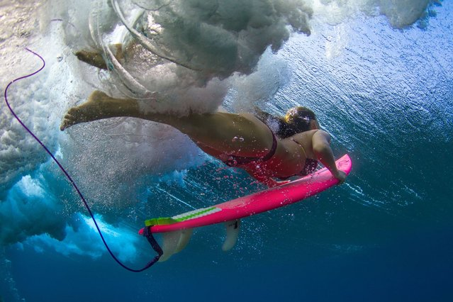 A surfer pierces a wave with her surfboard. (Photo by Sarah Lee/Caters News)