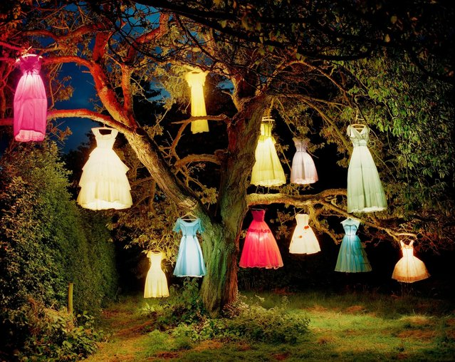 """The Dress Lamp Tree"", England, 2002. (Photo by Steven and Catherine Fink)"