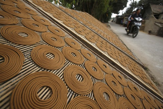 Incense is laid out to dry in preparation for Tet, the traditional Vietnamese lunar new year, in Hong Chau village, outside Hanoi January 29, 2015. (Photo by Reuters/Kham)