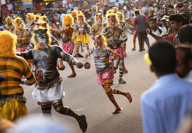 """More than 300 mainly pot-bellied men painted as leopards and tigers roamed the streets of Thrissur in the southern Indian state of Kerala performing the """"Puli Kali"""", or cat play on 19th September 2013, the 4th day of Onam, an annual harvest festival. The traditional art form enacts scenes that revolve around the theme of tiger hunting. Performing troops are usually on the lookout for fat performers as the tigers and leopards are easier to draw on big bellies."""