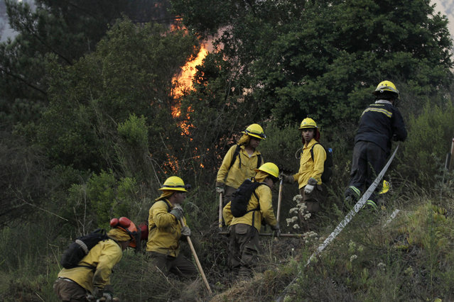 Firefighters get ready to attack a forest fire in Valparaiso,Chile, Saturday, March 14, 2015. (Photo by Luis Hidalgo/AP Photo)