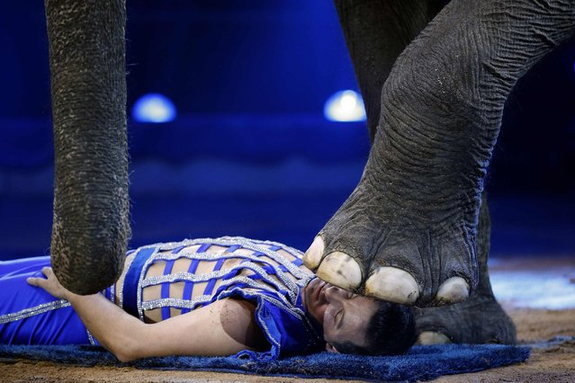 Joy Gartner performs with an elephant during the International Circus Festival of Monte Carlo in Monaco, on January 19, 2014. (Photo by Eric Gaillard/Reuters)