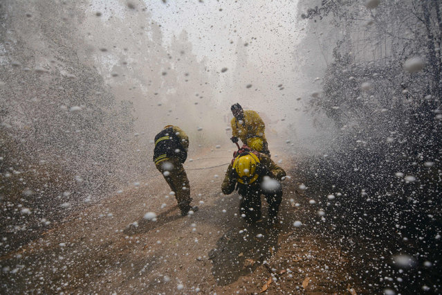Firefighters cover themselves from the foam thrown by the super tanker Boeing 747400 firefighting plane in the effort to put out a forest fire in Concepcion, Biobio region, Chile on January 28, 2017. Forest fires ravaging southern Chile have now killed 11 people, President Michelle Bachelet said Saturday, as firefighters waged an all- out battle to extinguish the raging infernos. (Photo by Guillermo Salgado/AFP Photo)