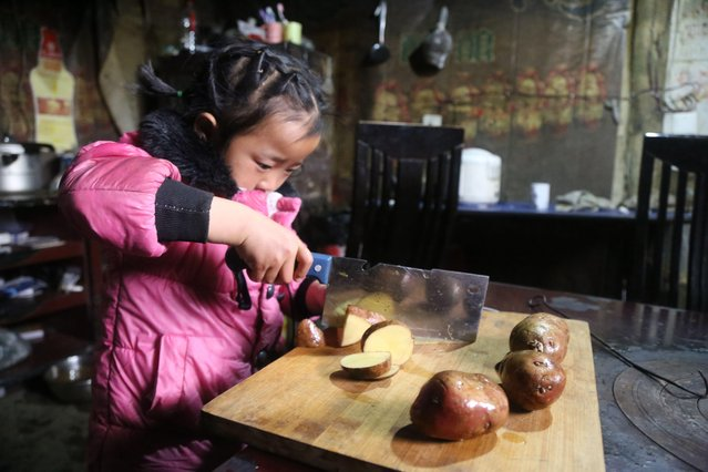 5-year-old Chinese girl Wang Anna prepares meals for her grandmother and great-grandmother at home in Zhuyuan village, Guizhou province, China on March 3, 2017. (Photo by Imaginechina/Rex Features/Shutterstock)