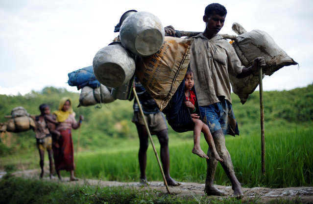Rohingya refugees walk through a paddy field after crossing the border near Cox's Bazar, Bangladesh on September 8, 2017. (Photo by Danish Siddiqui/Reuters)