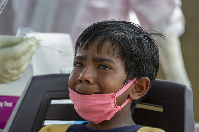 An Indian boy cries as a medical worker prepares to collect his swab sample for COVID-19 test at a rural health centre in Bagli, outskirts of Dharmsala, India, Monday, September 7, 2020. India's coronavirus cases are now the second-highest in the world and only behind the United States. (Photo by Ashwini Bhatia/AP Photo)