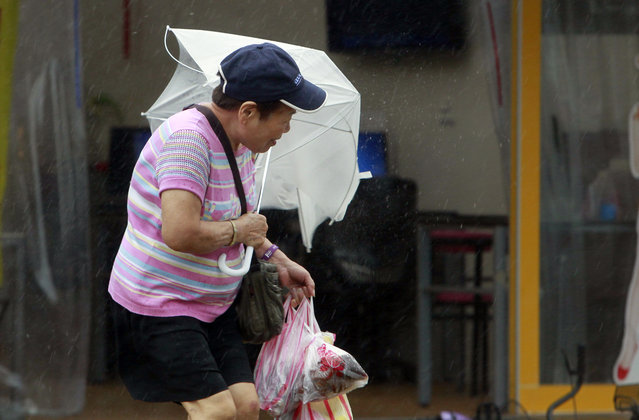 A woman struggles with her umbrella against powerful gusts of wind generated by typhoon Megi across the the island in Taipei, Taiwan, Tuesday, September 27, 2016. (Photo by Chiang Ying-ying/AP Photo)
