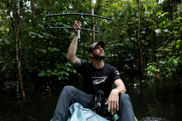 Lead researcher Emiliano Esterci Ramalho from the Mamiraua Institute uses a radio device to locate jaguars at the Mamiraua Sustainable Development Reserve in Uarini, Amazonas state, Brazil, May 30, 2017. (Photo by Bruno Kelly/Reuters)